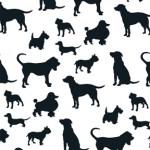 Alota Dogs