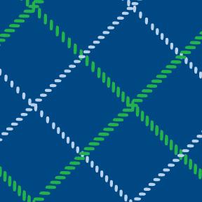 Plaid Blue